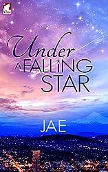 Under a Falling Star (English Edition)
