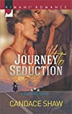 Journey to Seduction (Chasing Love Book 2)
