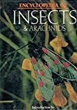 img - for Encyclopedia of Insects and Arachnids book / textbook / text book