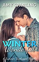 Winter Wonderful (The Summer Unplugged Series Book 7)