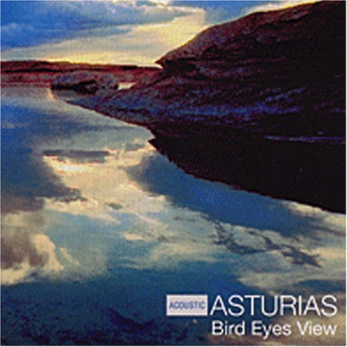 bird-eyes-view-by-acoustic-asturias-2013-08-02