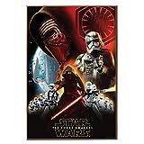 Star Wars Silver Buffalo SE9936 Disney Star Wars Ep7 Villain Group Poster Wood Wall Art, 13 x 19