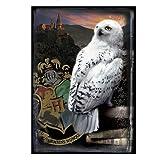 Harry Potter Hedwig & Hogwarts Castle Puzzle (1000 pieces)