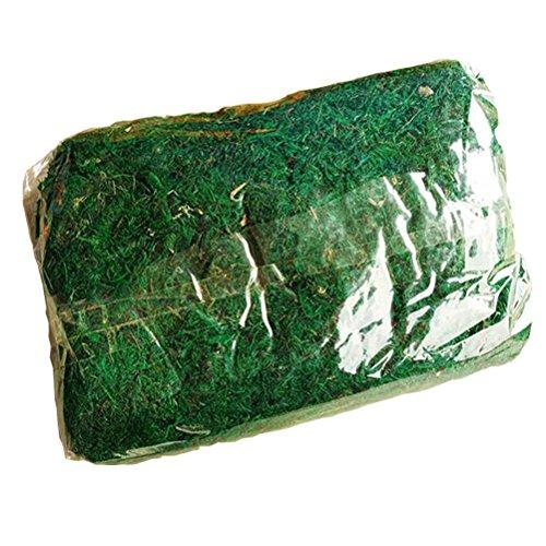 amgateeu-jardineria-musgo-natural-preservada-hierba-15-libras