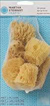 Martha Stewart 32228 Sea Sponge Set of 6