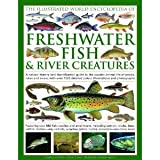 img - for The Illustrated World Encyclopedia of Freshwater Fish River Creatures BYGilpin book / textbook / text book