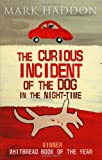 Mark Haddon The Curious Incident of the Dog in the Night-Time: Children's Edition