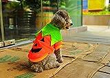 【可愛いパンプキン衣装】ワンちゃん用ハロウィンコスプレ服/犬猫用ペット用品(着物)/かぼちゃの変装仮装しっぽが出せて安心なドレス/小中大型/XSSMLサイズ/ハロウィンクリスマスパーティーイベント散歩に(オレンジ(XS))