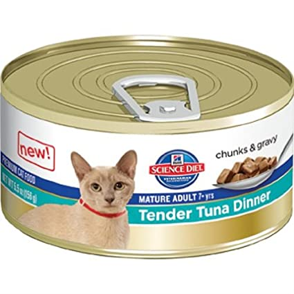 Best Cat Food For Putting On Weight