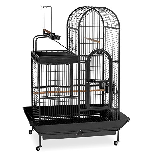 The Prevue Pet Products Wrought-iron Black Double-roof Play-top Bird Cage