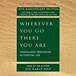 Wherever You Go There You Are | Jon Kabat-Zinn