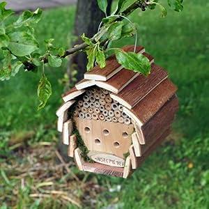 Kingfisher Maisonnette pour abeilles et insectes