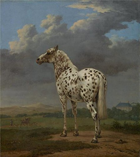 Oil Painting 'The Piebald Horse, About 1650 - 1654 By Paulus Potter', 16 x 18 inch / 41 x 45 cm , on High Definition HD canvas prints is for Gifts And Dining Room, Hallway And Powder Room (Coupons For Party City 2016)