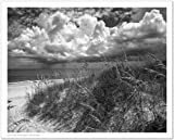 SMART ART - 'Another Glorious Day ' by Eve Turek - Fine Art Print 15x12 inches