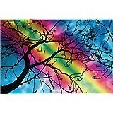 "Leinwandbild 90 x 60 cm: Regenbogen-Baum von Pirmin Nohr - fertiges Wandbild, Bild auf Keilrahmen, Fertigbild auf echter Leinwand, Leinwanddruckvon ""Pirmin Nohr"""