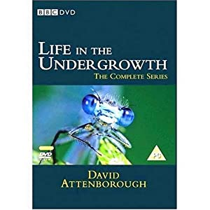Life In The Undergrowth [DVD]