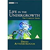 David Attenborough - Life In The Undergrowth [Import anglais]par Life in the Undergrowth