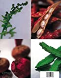 A Cook's Guide to Asian Vegetables (0794600786) by Wendy Hutton