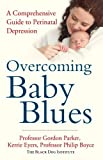 img - for Overcoming Baby Blues: A Comprehensive Guide to Perinatal Depression book / textbook / text book