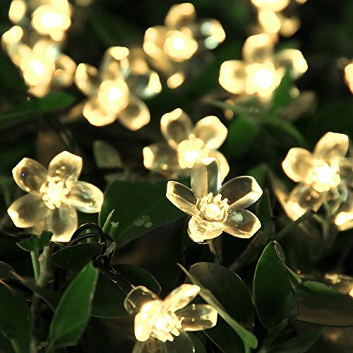 innootech led solar blumen lichterkette 5 meter 50er warmwei au erlichterkette deko f r garten. Black Bedroom Furniture Sets. Home Design Ideas