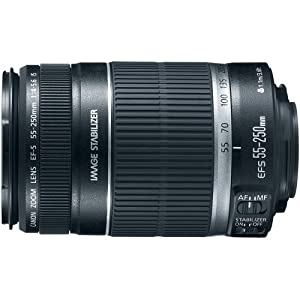 Canon EF-S 55-250mm f/4.0-5.6 IS II Telephoto Zoom Lens for Canon Digital SLR Cameras