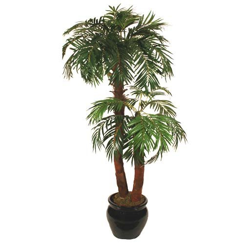 5.5ft Phoenix Palm Tree - Artificial Silk Plant  &  Tree Range