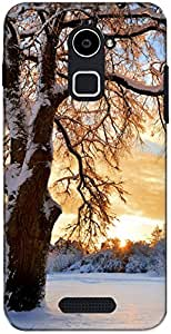 The Racoon Grip Snowy Tree hard plastic printed back case/cover for Coolpad Note 3 Plus