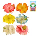 Hawaiian Hibiscus Hair Clip, Hula Fan...
