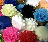 Resin Chrysanthemum Cabochons Assorted Colours Pairs 15mm x 20 pieces