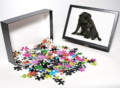 Photo Jigsaw Puzzle Of Dog. Black Pug With Black Puppy (6 Weeks Old) front-896259
