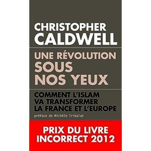 Une r�volution sous nos yeux. Comment l'islam va transformer la France et l'Europe