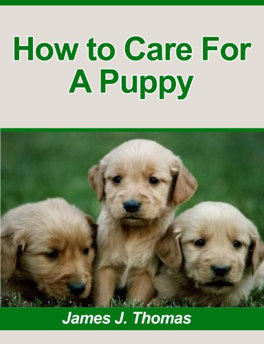 How To Care For A Puppy: What To Consider Before Acquiring A Puppy, Preparing Your Home For The Puppy And House Training A Puppy