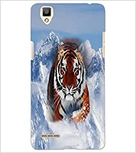 PrintDhaba Tiger D-3699 Back Case Cover for OPPO F1 (Multi-Coloured)