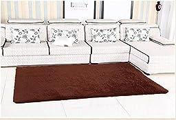 YOFAN 4-Feet By 5-Feet Modern Shag Area Rug,Super Soft Living Room/Bedroom/Kitchen Carpet,4Cm Wool Length - coffee