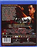 Image de Dragon (Blu-Ray) (Import Movie) (European Format - Zone B2) (2013) Jason Behr; Amanda Brooks; Robert Forster;