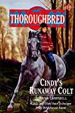 Cindy's Runaway Colt (Thoroughbred Series #13) (0061063037) by Campbell, Joanna