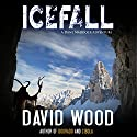 Icefall: A Dane Maddock Adventure, Book 4 Audiobook by David Wood Narrated by Jeffrey Kafer