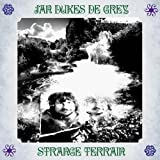 Strange Terrain by Jan Dukes De Grey (2010-03-15)