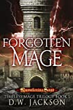 Forgotten Mage: Reawakening Saga (Timeless Mage Trilogy Book 1)