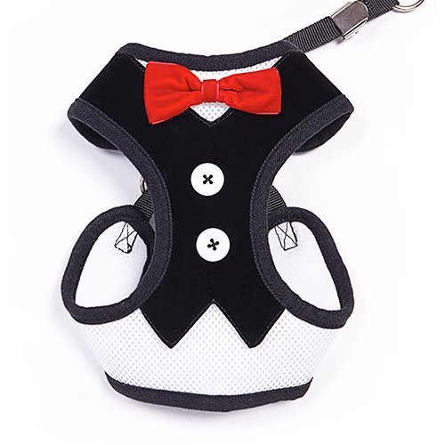 BINGPET-Velvet-Red-Bowtie-Gentleman-Suit-Boy-Dog-Tuxedo-Harness-Vest-for-Dogs-with-Handle