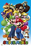 2421536 Nintendo Super Mario Cast Video Game Poster Print