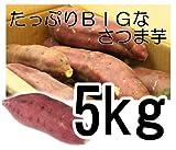 紅いも/サツマイモ【さつま芋】 5kg箱