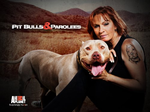 Pitbulls and Parolees Season 3