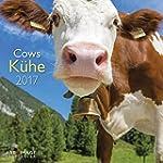 K�he 2017 - A&I Tierkalender, Kuhkale...