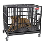 Pro Select Empire Cage - LARGE