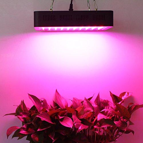 Lightimetunnel Led Grow Light 300w Full Spectrum Plant