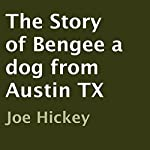 The Story of Bengee a Dog from Austin TX | Joe Hickey