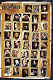 Harry Potter 7 The Deathly Hallows Characters Maxi Poster 61x91.5cm