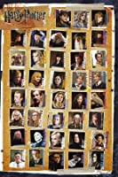 Poster Harry Potter and the Deathly Hallows 7 with Film Characters 91 x 61 cm Ohne Rahmen