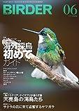 BIRDER(バーダー)2016年6月号 海外探鳥 初めてガイド